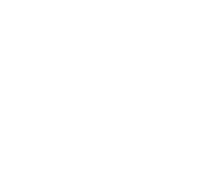 DiscCollection_Icon
